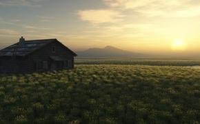 Wallpaper dawn, house, field