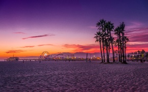 Picture beach, palm trees, the ocean, CA, USA, Los Angeles, Santa Monica
