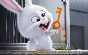Picture kawaii, cinema, design, smile, rabbit, key, movie, animal, hair, film, carrot, cute, door, adventure, moe, …