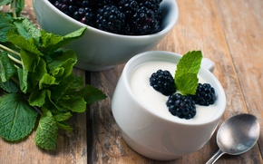 Picture food, blueberries, cream, dessert, blueberry, cream, dessert, milk, yogurt, yogurt