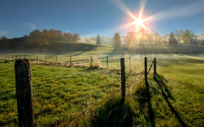 Picture field, trees, morning, fence, Germany, Elevation of Beilstein, Unterthingau