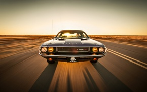 Picture road, the sky, the sun, lights, shadow, the hood, horizon, driver, Dodge, Challenger, front