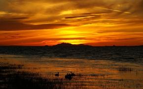Wallpaper lake, grass, sunset