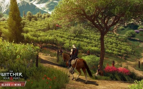 Wallpaper plantation, Roach, horse, Geralt, the Witcher, Blood and Wine, Blood and Wine, Supplement, tree, The ...