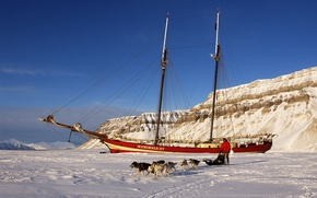 Picture ice, dogs, people, ship, sailboat, frost, sleigh