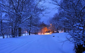 Picture winter, road, light, snow, trees, night, lights, the evening, lantern