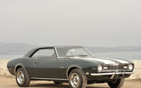 Picture Chevrolet, muscle car, camaro, chevrolet, muscle car, 1968, Camaro, z28
