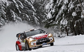 Picture Winter, Snow, Forest, Tree, Citroen, Lights, DS3, WRC, Rally, The front