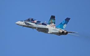 Picture fighter, flight, multipurpose, Hornet, CF-18