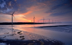Picture algae, water, twilight, stranded, windmills, propeller, blades