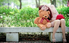 Picture girl, bear, Asian