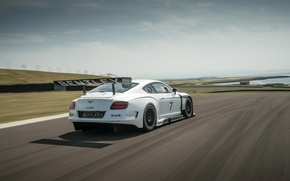 Picture bentley, lake, race, racing, continental gt3