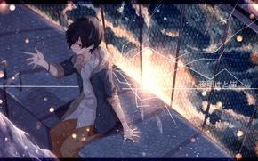 Wallpaper the sky, the sun, clouds, sunset, the fence, anime, art, guy, nico nico singer, soraru, ...