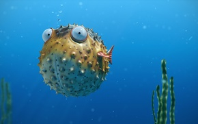 Picture sea, eyes, algae, bubbles, ball, fish, spikes