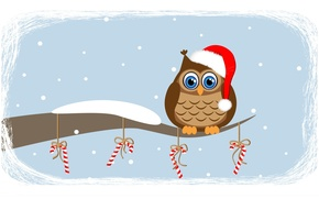 Picture snow, owl, waiting for, is