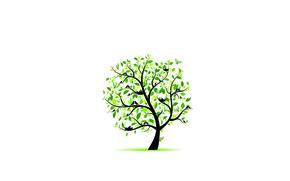 Wallpaper greens, leaves, birds, tree, butterfly, socket