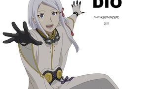Picture guy, last exile, exile, Dio