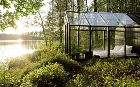 Picture forest, glass, the sun, nature, house, river, eco