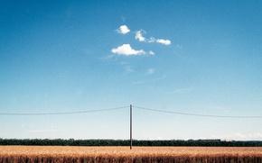 Picture summer, sky, clouds, telephone line, corn field