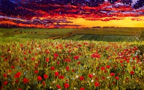 """Picture oil, picture, canvas, artist O. Katz., """"the Evening sky over a poppy field"""""""