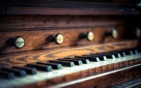 Picture macro, keys, Church organ, church organ