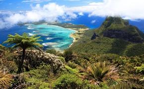 Picture sea, tropics, palm trees, shore, mountain, Cape