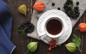 Wallpaper berries, tea, Aronia, Cup, Rowan, physalis, drink