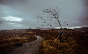 Picture storm, camera, tree, man, path, cloudy
