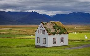 Picture landscape, mountains, house, field, meadows
