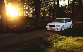 Picture turbo, white, wheels, forest, subaru, japan, jdm, tuning, front, sti, face, low, stance, forester