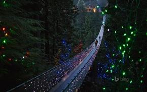 Picture trees, lights, people, holiday, Canada, British Columbia, suspension bridge, North Vancouver, Capilano