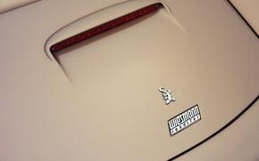 Picture Minimalism, Logo, Car, Gecko, Gecko, Minimalism, Wiesmann Roadster MF5