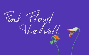 Picture flowers, lilac, Pink Floyd, The wall