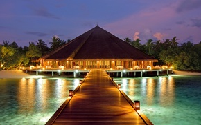 Picture palm trees, the ocean, the evening, pier, resort, Bungalow