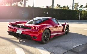 Picture Ferrari, Red, Enzo, sun