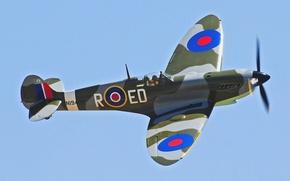 Picture the sky, flight, the plane, fighter, propeller, Spitfire, scout, interceptor, Supermarine, Spitfire, Supermarine