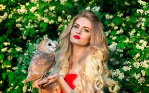 Picture owl, bird, makeup, blonde