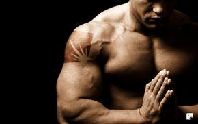 Picture man, Jock, muscle, bodybuilder