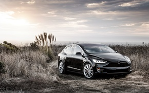 Picture the concept, Black, Tesla, Model X, Tesla, electric car