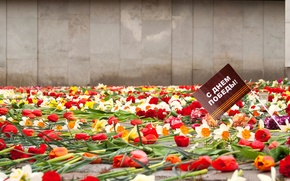 Wallpaper flowers, memory, holiday, May 9, Victory day, eternal