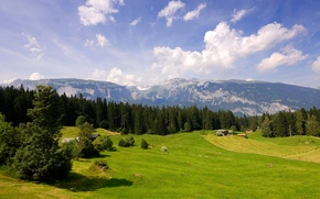 Picture field, Switzerland, meadows, mountains, forest, clouds