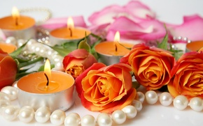 Picture flowers, roses, candles, petals