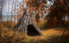 Picture autumn, forest, wigwam