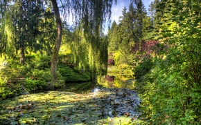 Picture garden, trees, the bushes, Victoria, greens, Canada, pond, Butchart Gardens