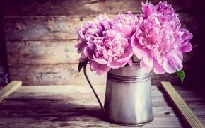 Wallpaper flowers, Board, peonies, pitcher, bouquet