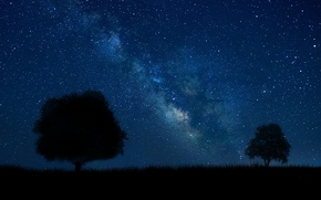 Picture summer, white, grass, black, trees, blue, land, stars, tree, man, milky way, silhouette, laneynest