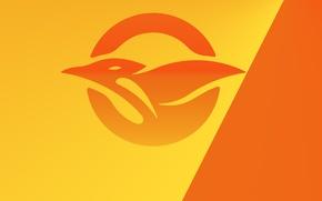 Picture orange, yellow, bird, Seagull