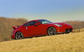 Picture road, auto, grass, machine, red, nissan, auto, Nissan