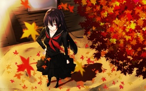 Picture autumn, leaves, girl, smile, the wind, schoolgirl, art, kanoa yuuko, tasogare otome x amnesia, gensouki