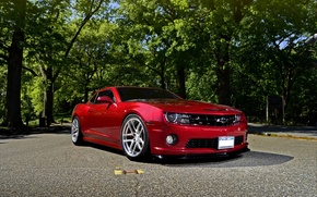 Picture auto, trees, red, Chevrolet, chevrolet, muscle car, camaro ss, Camaro